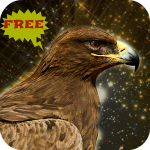 Golden Eagle Bird Simulator