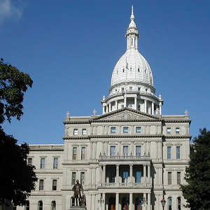 Citizens Guide MI Legislature